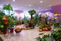 Магазин, организующий продажу цветов