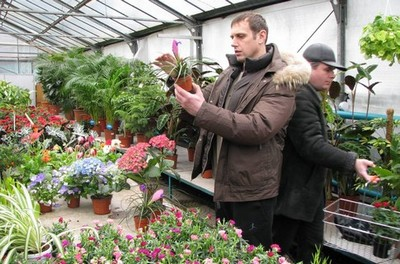 Цветочный магазин как бизнес