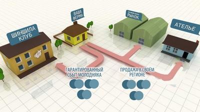 План-схема размещения построек